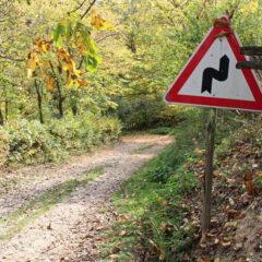 Duhoviti meštanin u svom selu postavio saobraćajne znakove