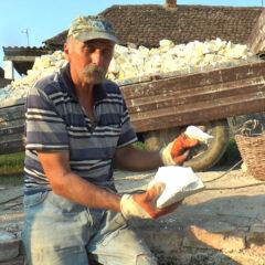 Mitrovići – Poslednji čuvari vatre u Posavotamnavi