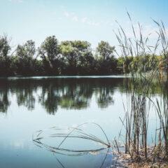 Tabanovačka jezera – oaza za kupače i pecaroše